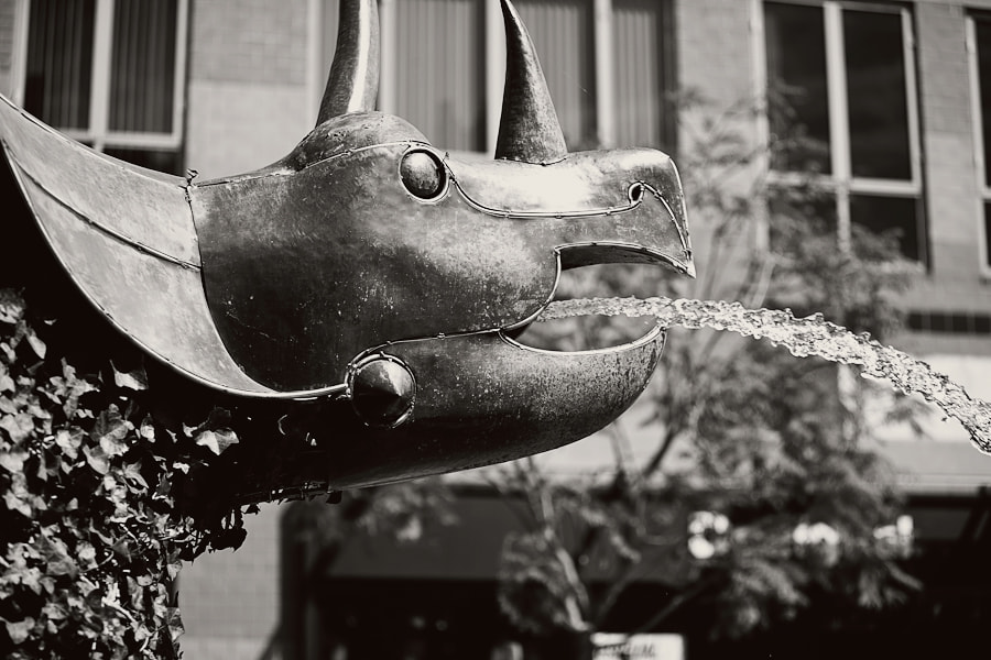 Photograph Rhino Fountain by Ryan Longnecker on 500px