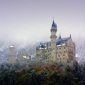 Neuschwanstein Castle by Pilar  Azaña (piazta)) on 500px.com