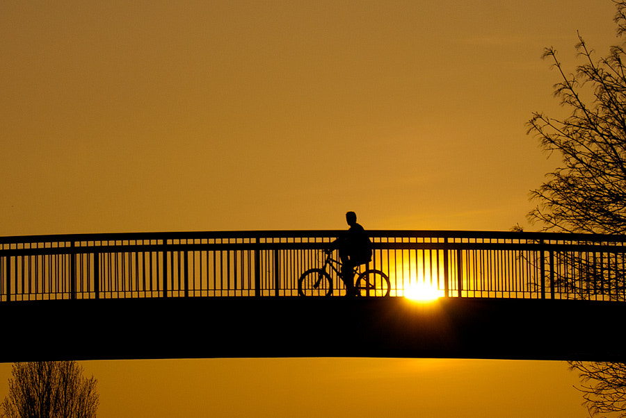 Photograph Cycling over the bridge by Youcef Bendraou on 500px