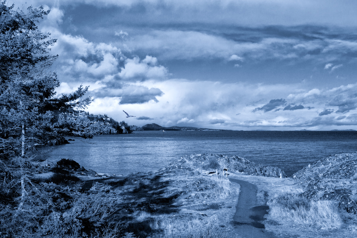 Photograph Neck Point - Second Beach by Mike Thompson on 500px