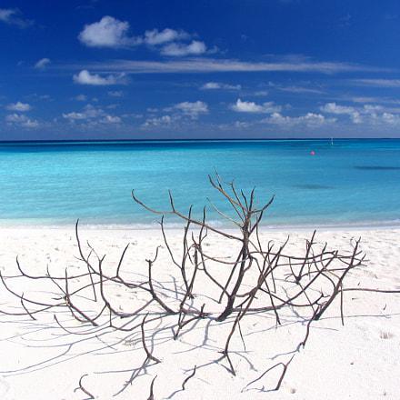 San Island