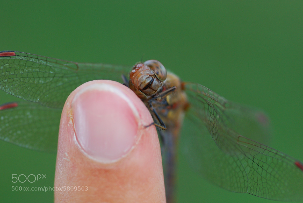 Photograph In love with your finger ! by Lew Binarity on 500px