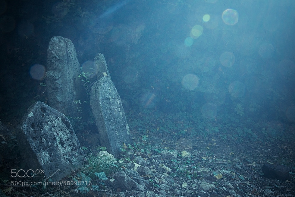 Photograph The Jewish cemetery by Robert Adamec on 500px
