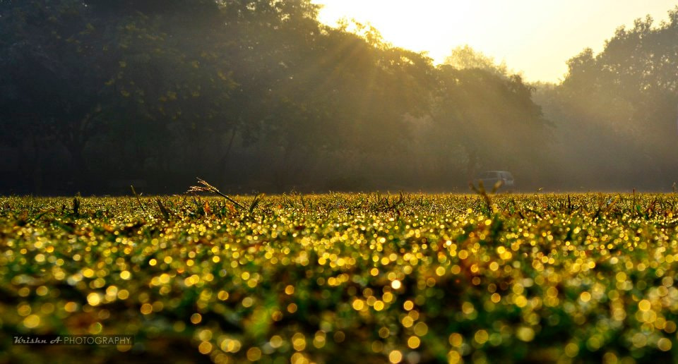 Photograph Diamonds on the earth  by Krishna Angira on 500px