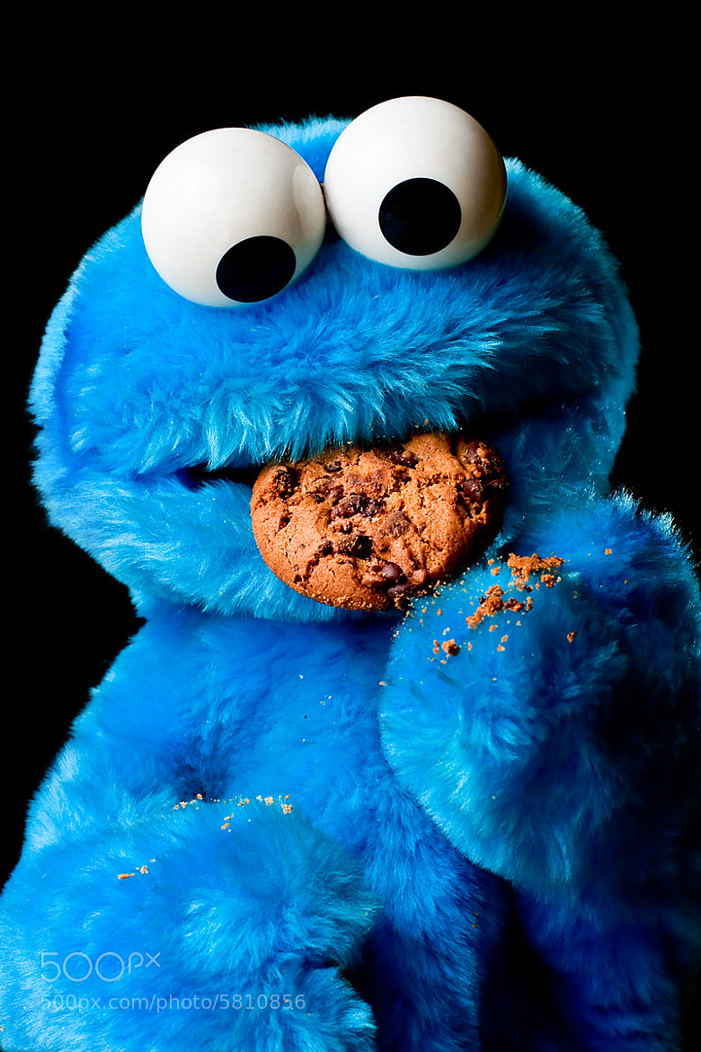 Photograph Cookie Monster by Marco Schmidt on 500px