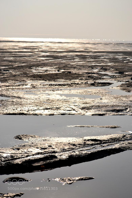 Photograph Back waters....1 by Padmakar Kappagantula on 500px