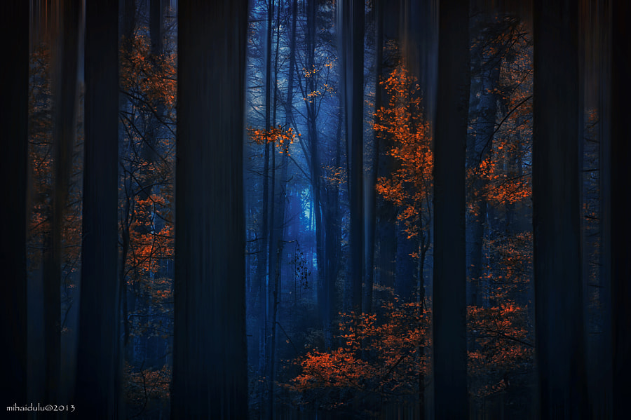Photograph Heart of October by Mihai Dulu on 500px