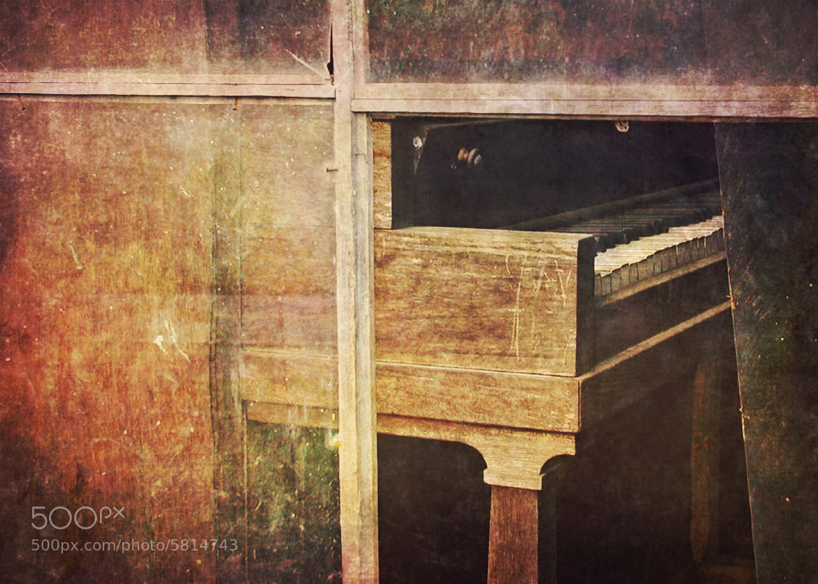 Photograph the day the music died by Ginger Wagner on 500px