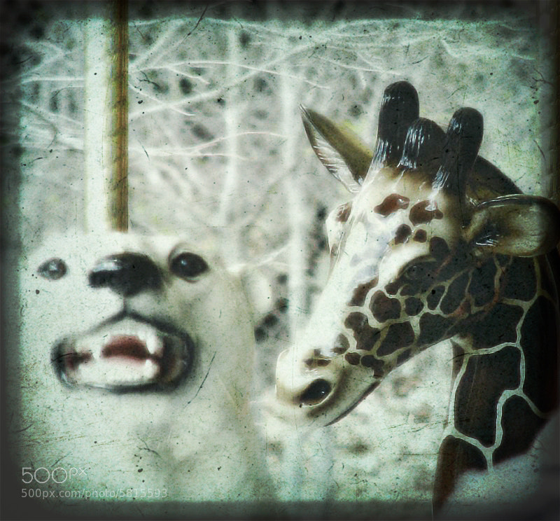 Photograph creepy carousel animals by Ginger Wagner on 500px