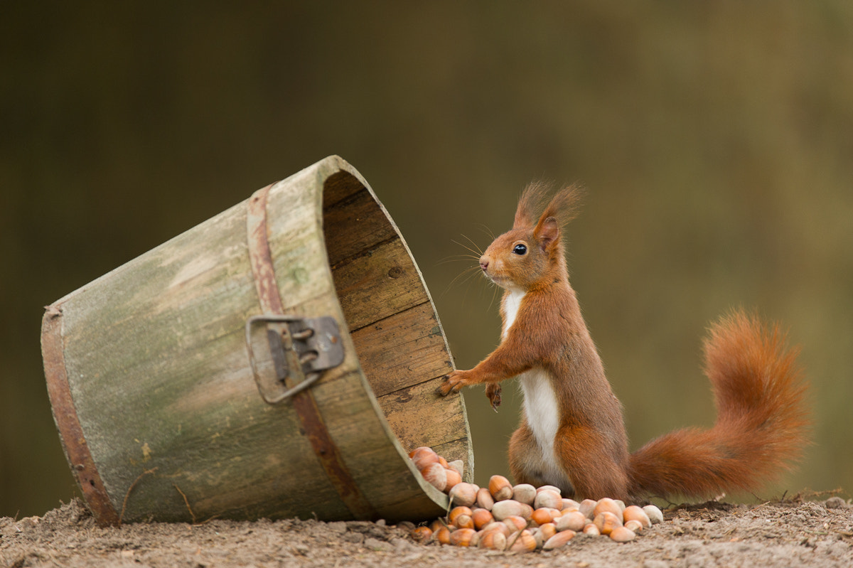 Photograph oooops, did I just do that? by Edwin Kats on 500px