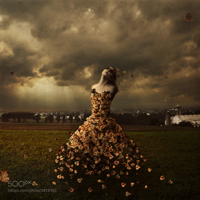 Photograph The Leaves of Linden Avenue by Brooke Shaden on 500px