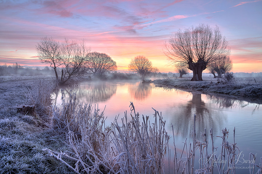 Dawn on the Stour by Antony Burch on 500px.com
