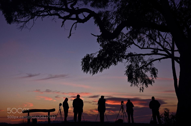 Photograph Merlins Lookout. by Warren Patten on 500px