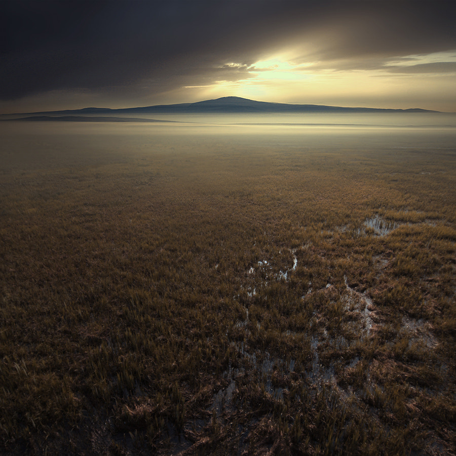 Photograph Untitled by Karezoid Michal Karcz  on 500px