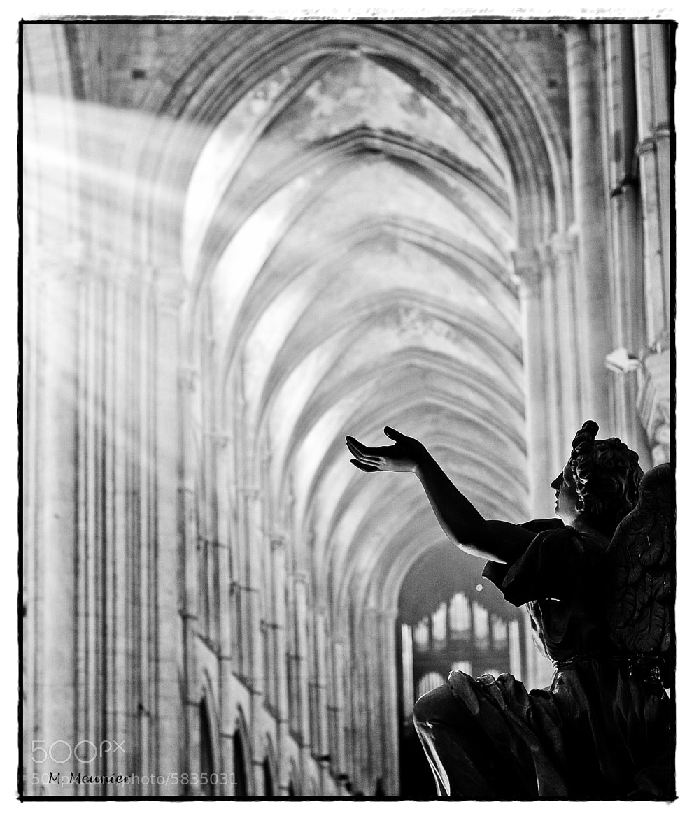 Photograph Touching the Divine by Mathieu Meunier Photographie © on 500px
