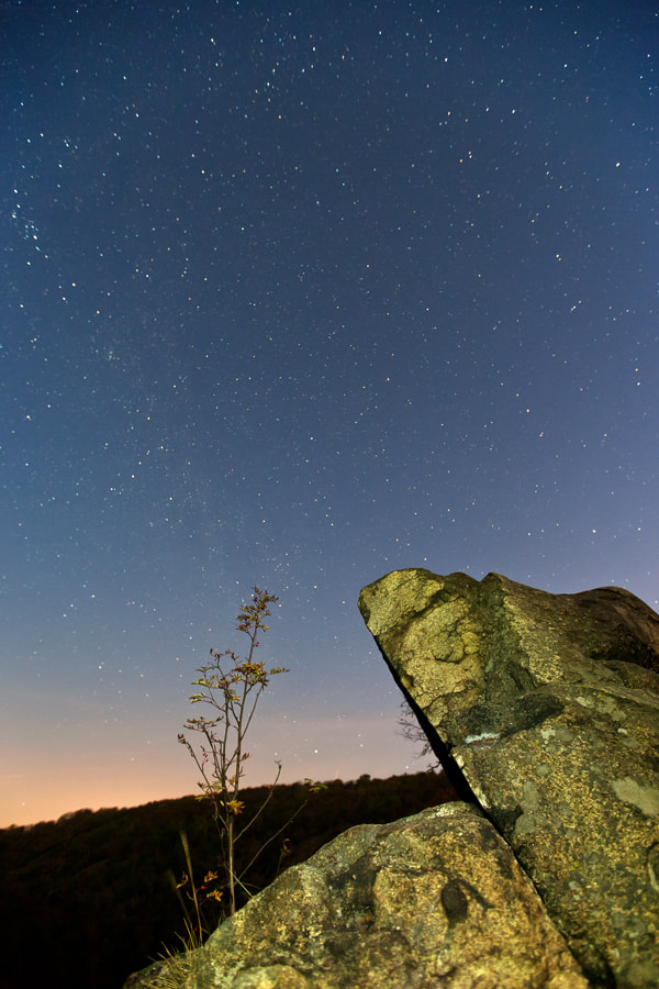 Photograph Harz - Rosstrappe by Mathias Rehberg on 500px