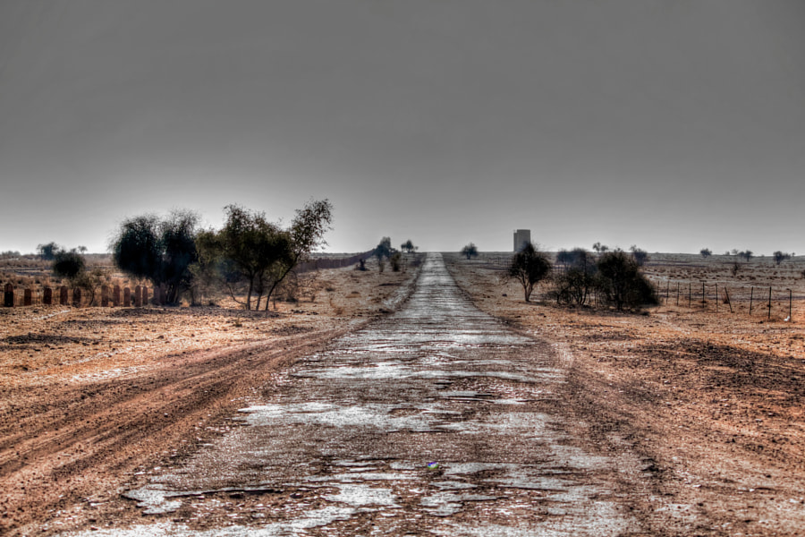 the long road home....