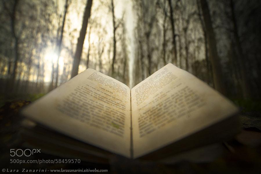 Photograph The natural power of reading by Lara Zanarini on 500px