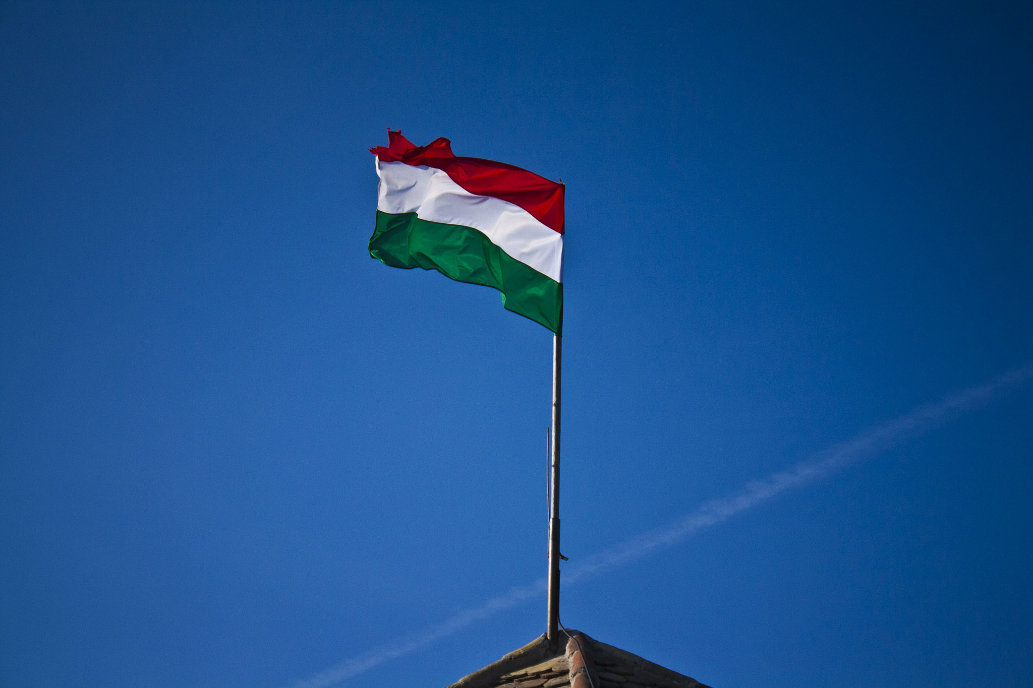 Photograph The Hungarian flag:) by Zsolt Berkes on 500px