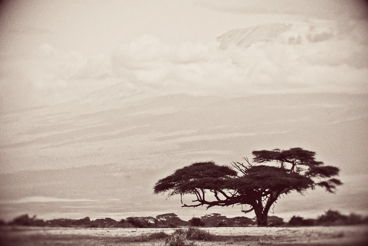 Photograph Views of Kilimanjaro by Darren Smith on 500px