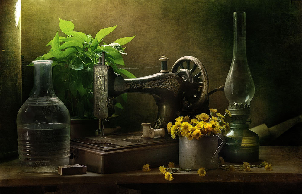 Photograph still life by Anatoly Che on 500px