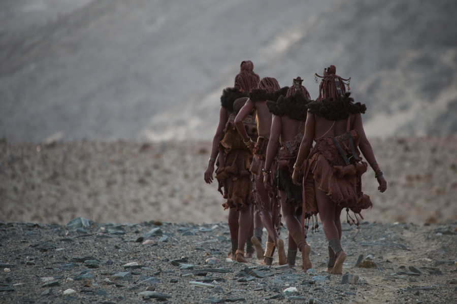 Morning walk with the himba's