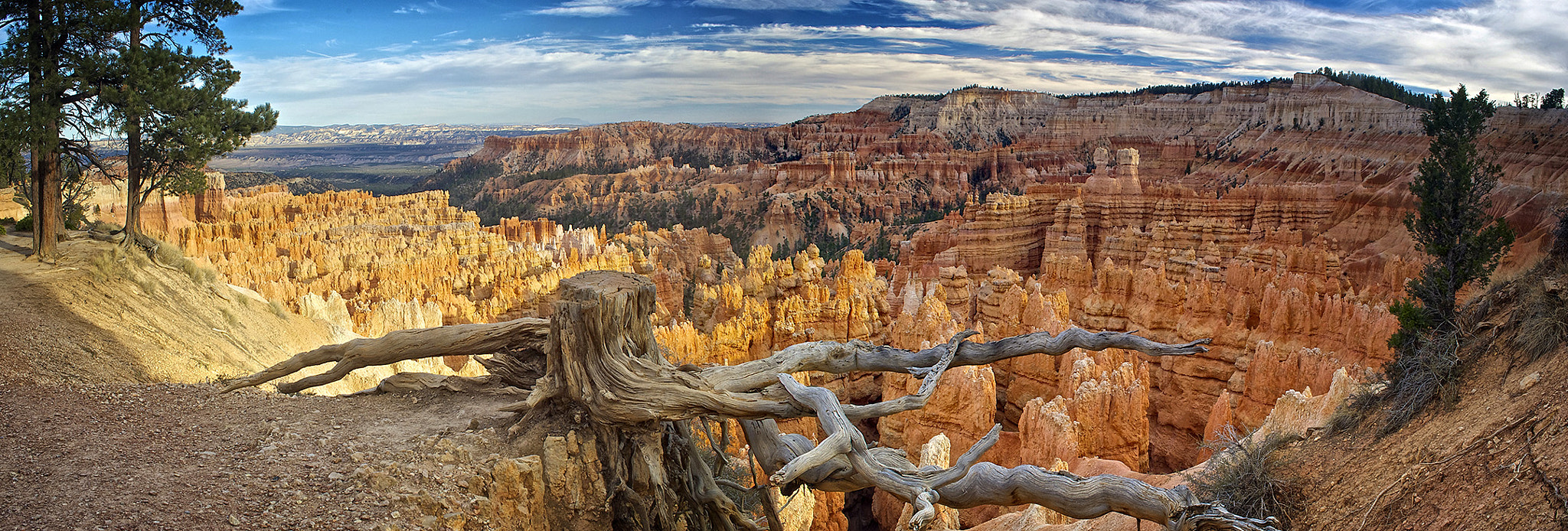 Photograph Bryce Canyon by Omar  Perea on 500px
