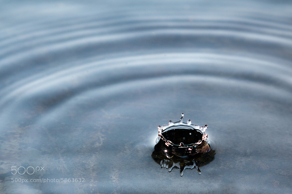 Photograph The Crown  by Asi Yacobovitch on 500px