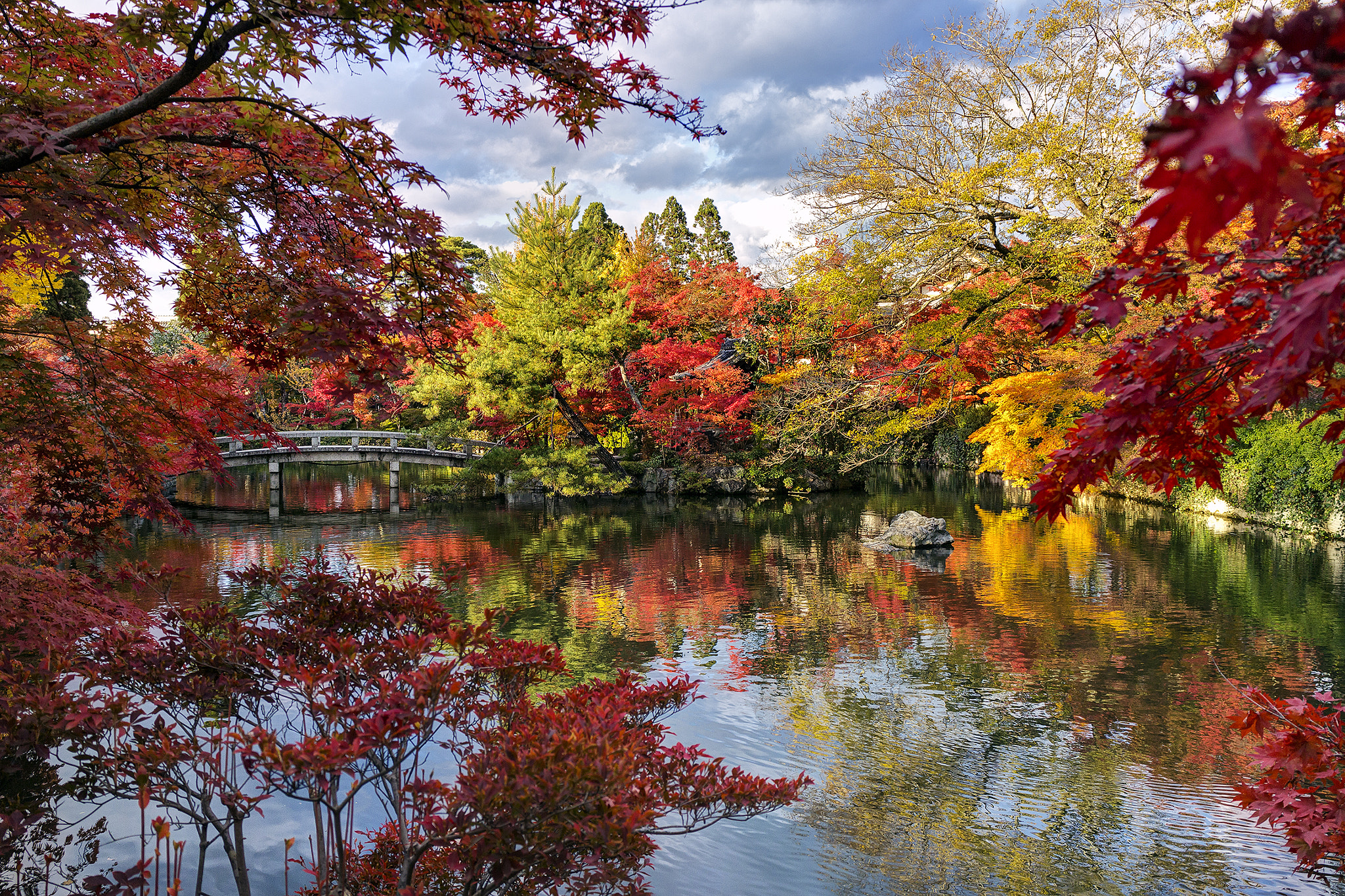 Photograph Just Colorful Fall ... by Chaluntorn Preeyasombat on 500px
