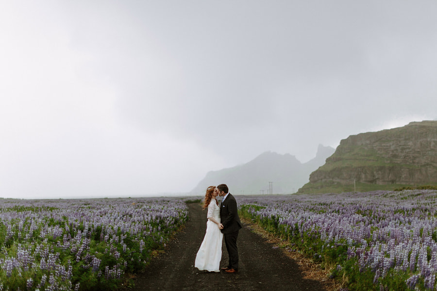 Photograph Iceland Wedding in a Field of Lupines by Levi Tijerina on 500px