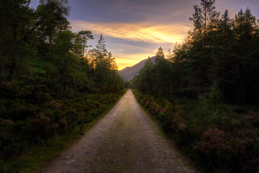 Glen Affric Trail by Craig McCormick on 500px.com