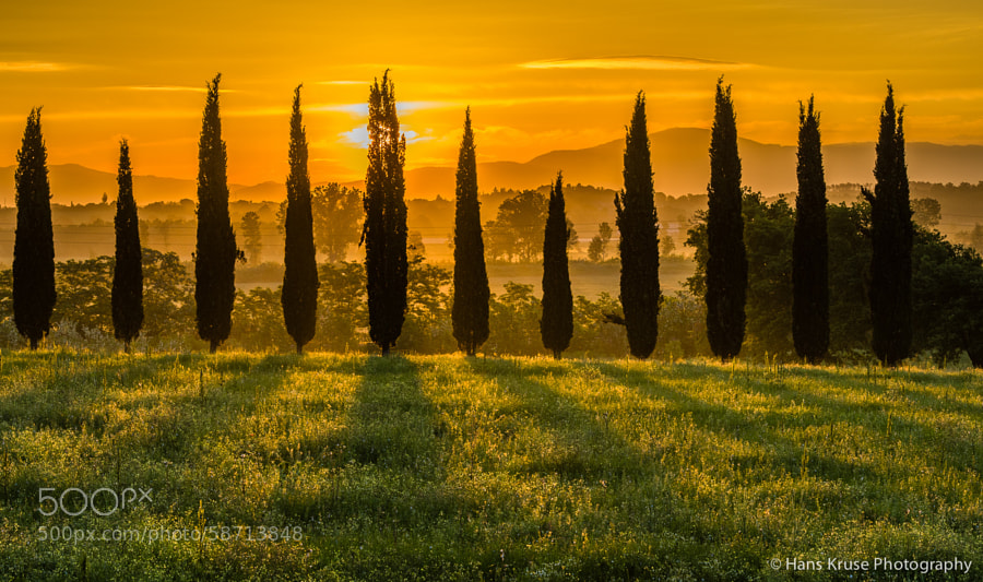 This photo was shot in May 2013 before the Tuscany May 2013 photo workshop. The May 2014 photo workshop is sold out but there is still seats available on the Tuscany November 2014 photo workshop. See my website for details.