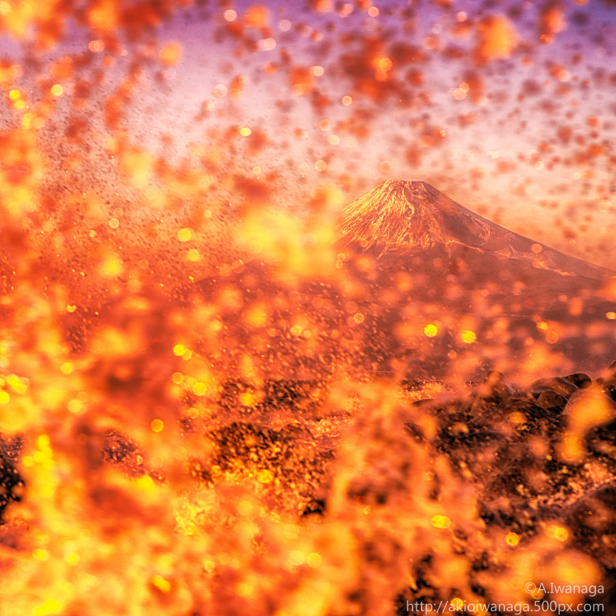 Fuji shake wave red