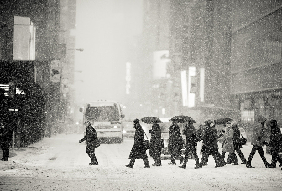 Photograph Blizzard by Navid Baraty on 500px