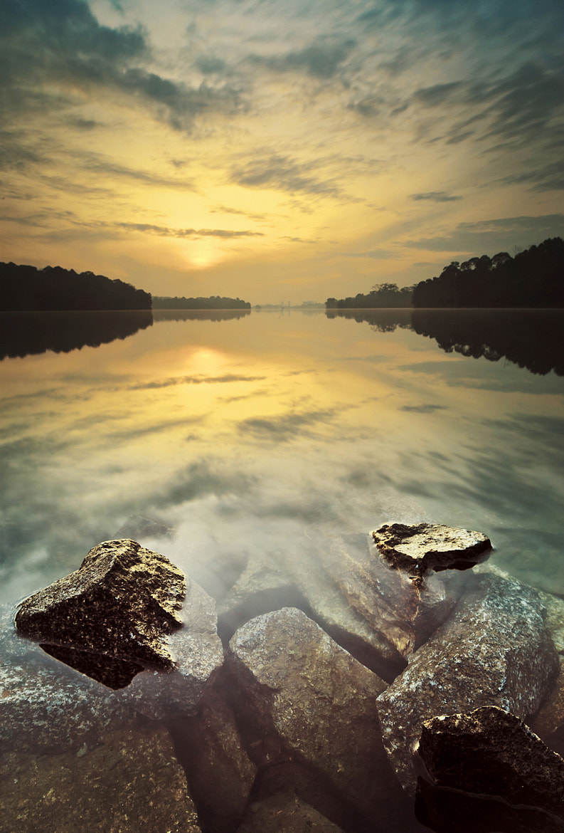 Photograph Sunrise - Upper Peirce Reservoir, Singapore by Clement Chia on 500px