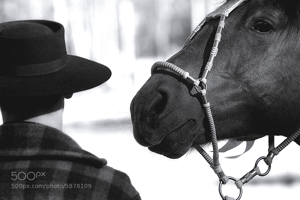 Photograph Inseparable ... by Alberto Nogueira Junior on 500px