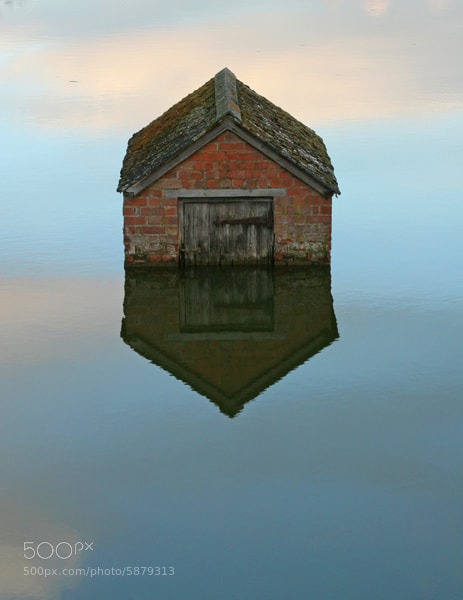 Man made pond - Duck House
