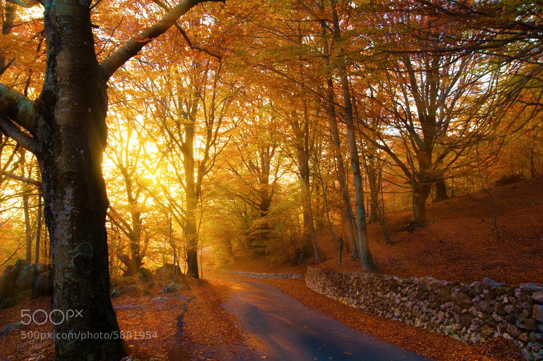 Photograph Heavens Sunlight by Simone Ciliberti on 500px