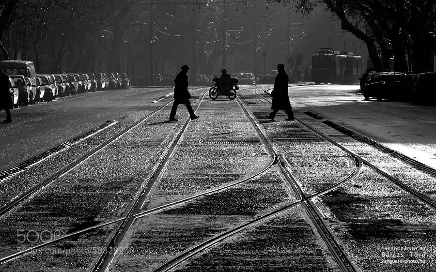 Photograph Crossing the street by Balázs Tör? on 500px