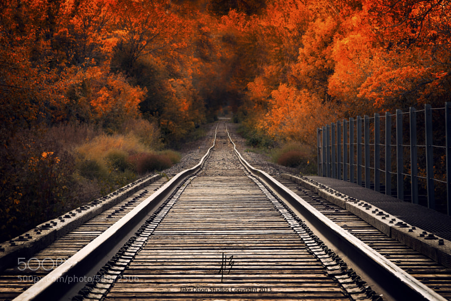 Photograph Fall Tracks by Jake Olson Studios on 500px