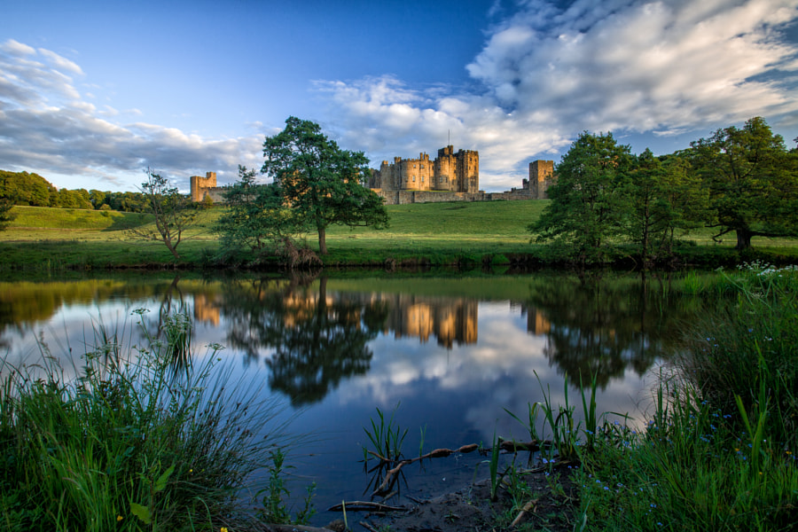 Golden Light, Alnwick Castle