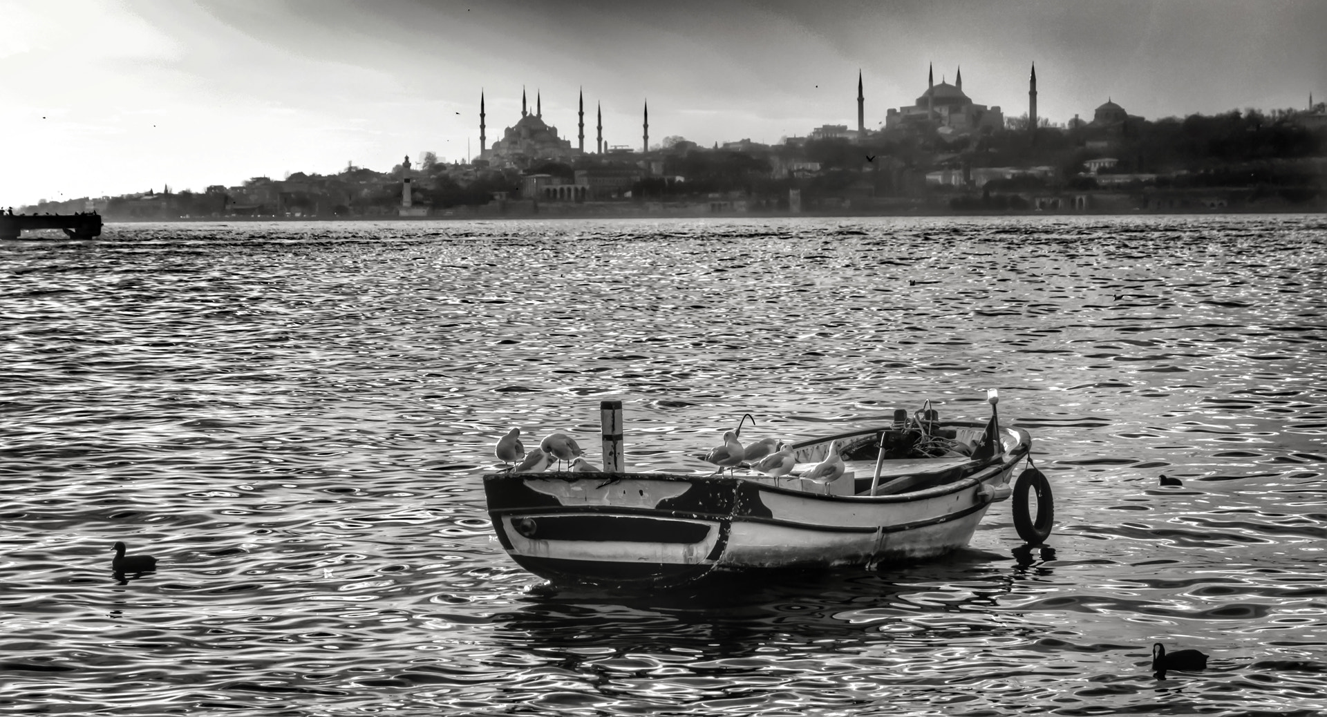 Photograph Rowing boat in Istanbul... by Merthan Kortan on 500px