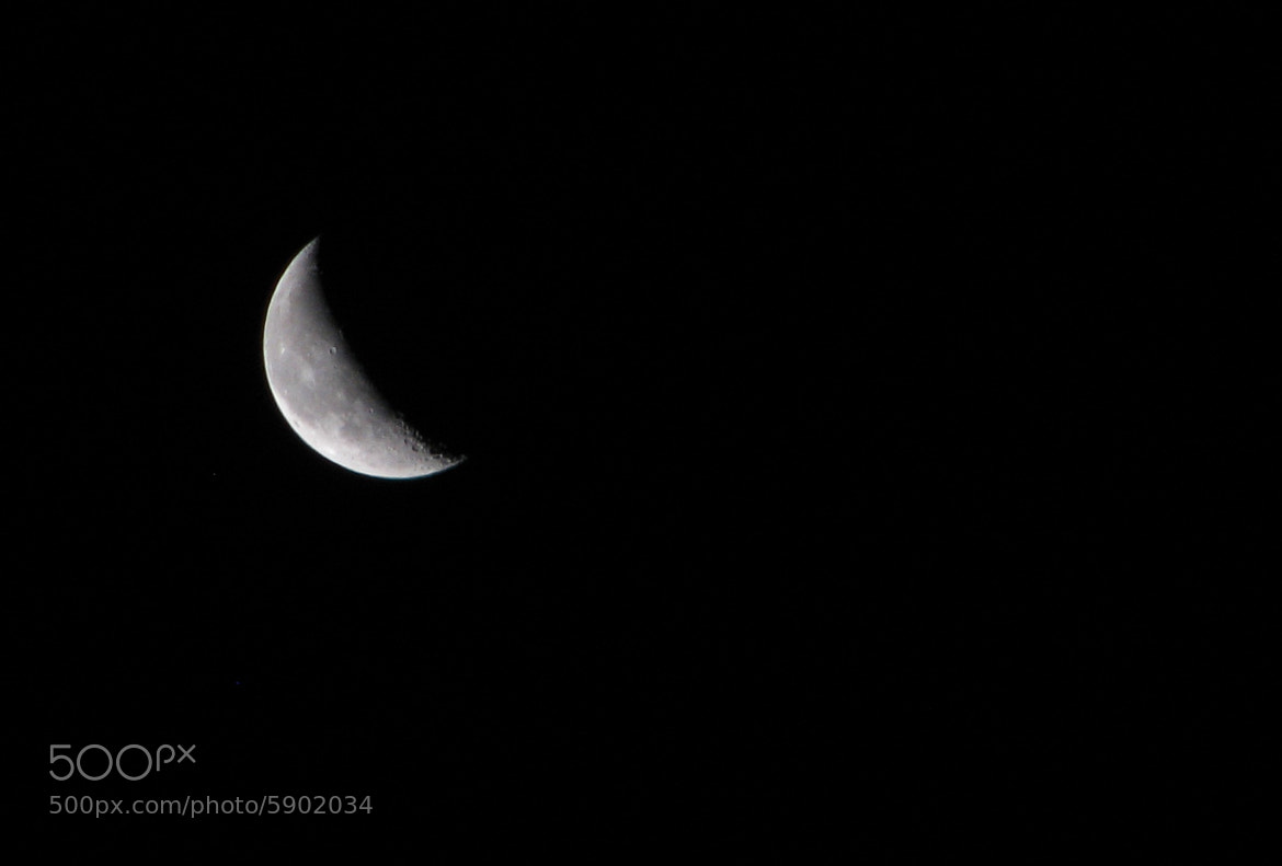 Photograph Shy moon by Luis Aviles on 500px