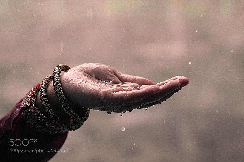 Photograph বৃষ্টির কাব্য (The song of rain) by S.M. Shajjad Hossain Shajib on 500px