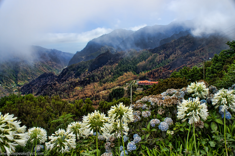 Photograph Madeira Mountains by Donato Scarano on 500px