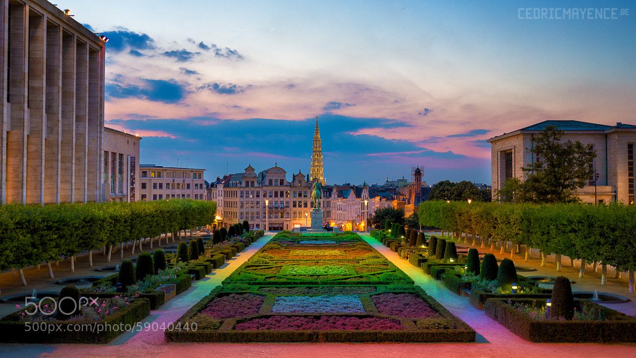 Photograph le jardin du mont des arts bruxelles be by for Le comptoir du meuble bruxelles