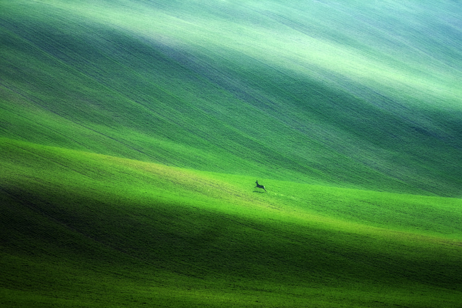 Photograph Escape by Marcin Sobas on 500px