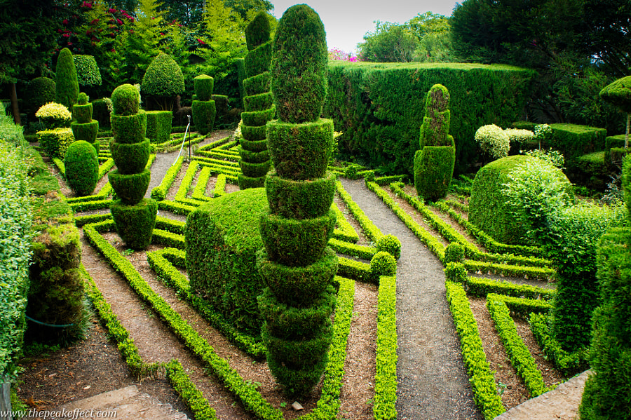 Photograph Formal Gardens by Donato Scarano on 500px