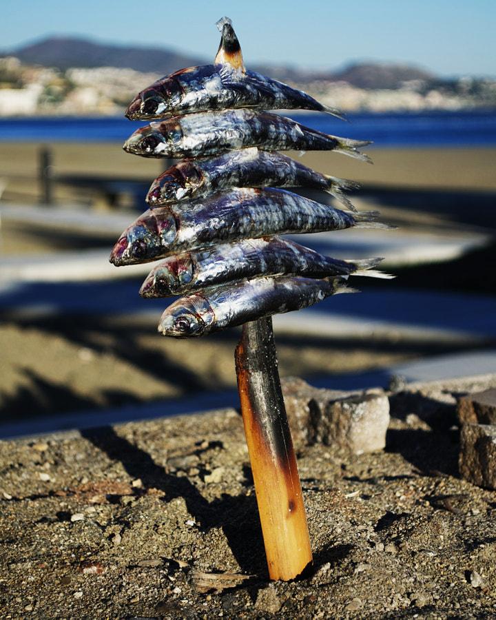 Espeto de Sardinas de Isa Ruiz en 500px.com