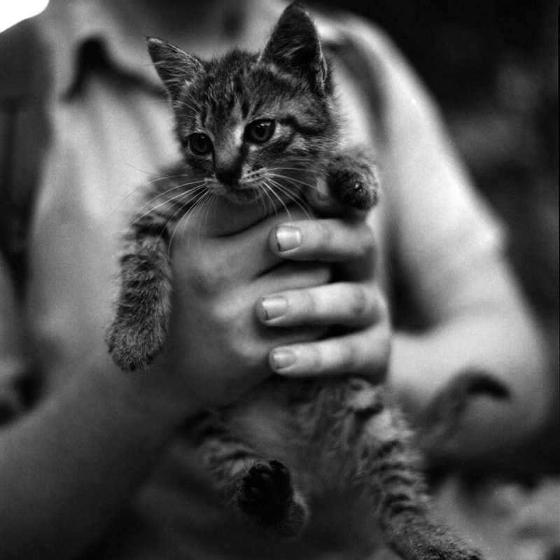 Photograph in safe hands by Anna Pavlova on 500px